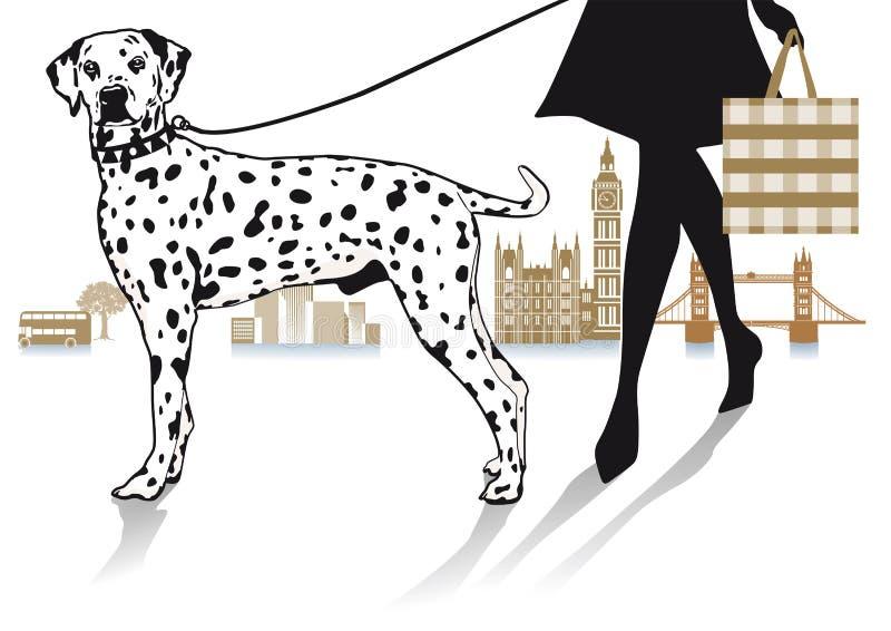 Mulher que anda um cão Dalmatian ilustração royalty free