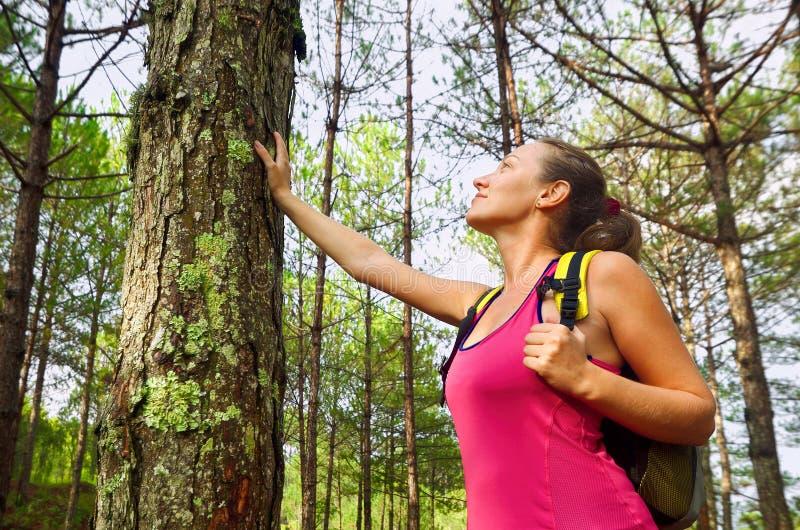 Mulher que aprecia a floresta bonita do verde do curso dos pinhos em Europa fotografia de stock