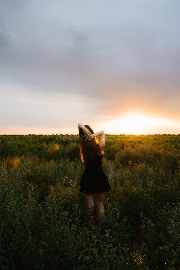 Mulher que aprecia a natureza no prado Campo fresco do ver?o do ar da manh? dos bra?os estendido no nascer do sol imagens de stock