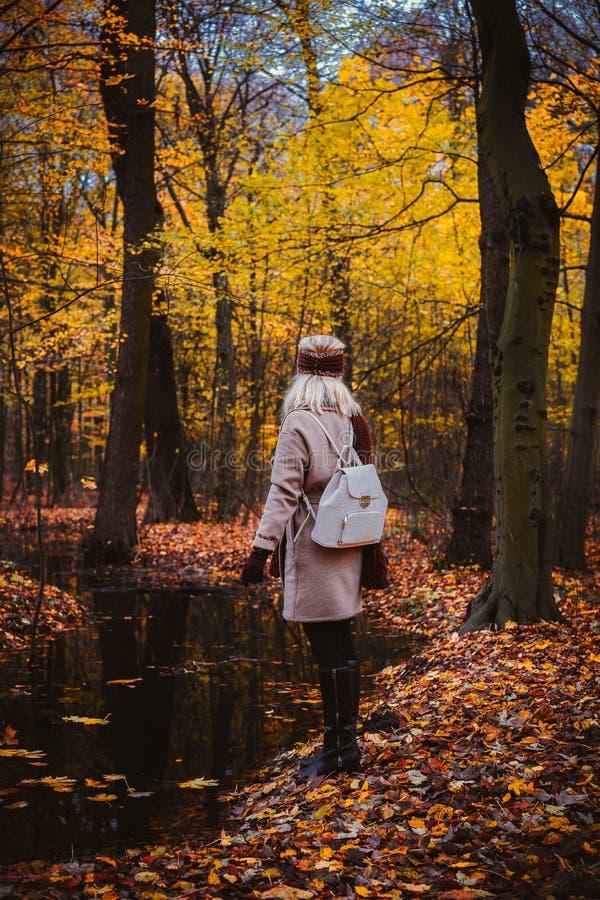Mulher que aprecia o silêncio na costa do lago do outono Mulher e composição do outono imagens de stock