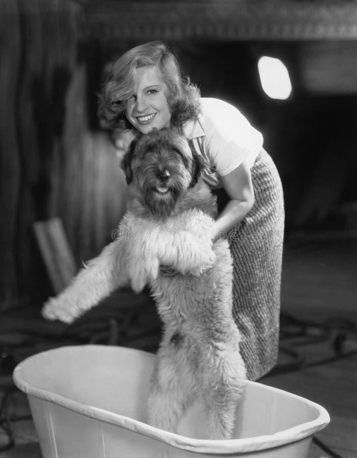 Mulher que banha o cão na cuba (todas as pessoas descritas não são umas vivas mais longo e nenhuma propriedade existe Garantias d imagens de stock