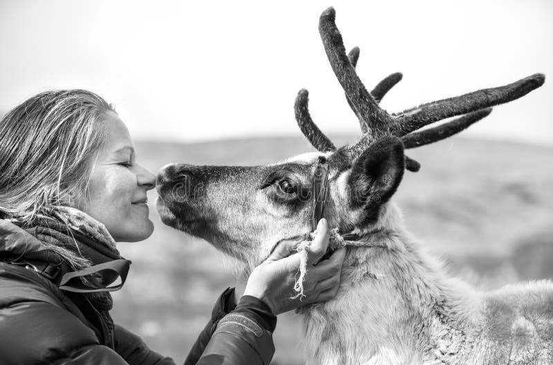 Mulher que beija uma rena bonito foto de stock