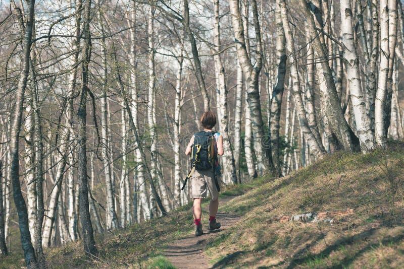 Mulher que caminha na floresta, uma pessoa que anda na floresta, curso backpacking da aventura do verão, vista traseira, imagem t imagens de stock
