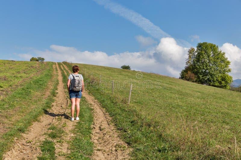 Mulher que caminha no monte do verão perto de Liptovsky Trnovec, Eslováquia fotos de stock royalty free