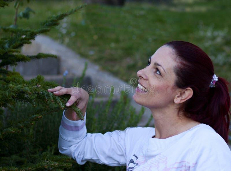Mulher que compra a árvore de Natal imagens de stock royalty free