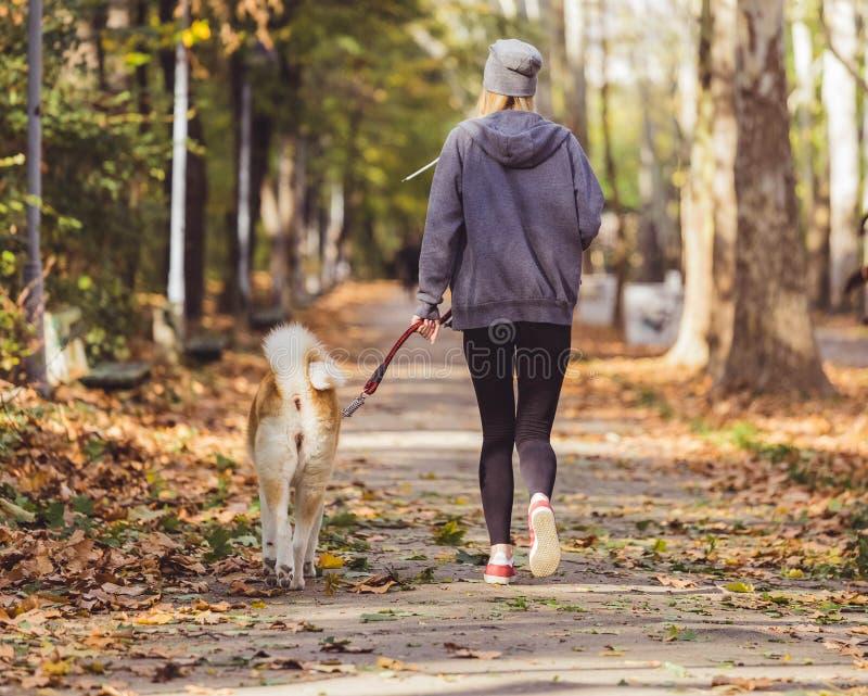 Mulher que corre e que anda com seu cão no parque foto de stock