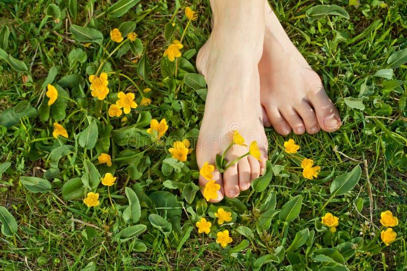 Mulher que descansa seus pés na grama fotografia de stock