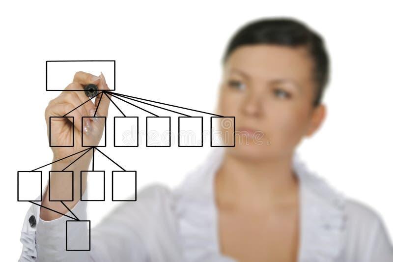 A mulher que desenha o diagrama foto de stock
