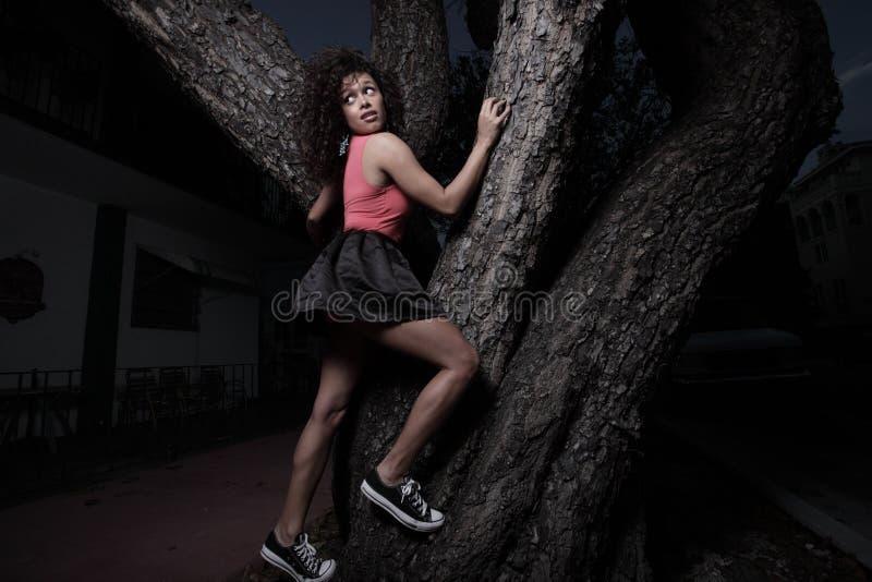 Mulher que escala uma árvore fotografia de stock royalty free