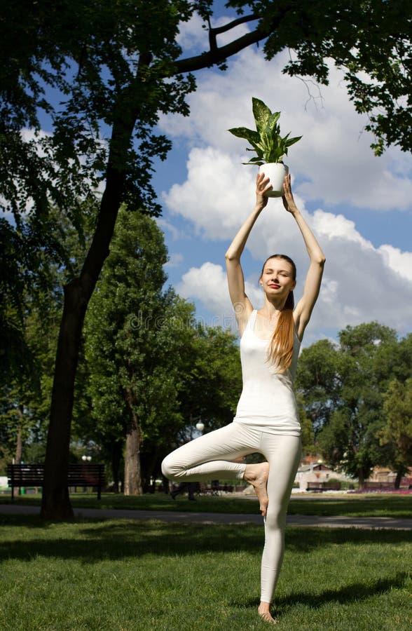 Mulher que está na pose da árvore imagens de stock royalty free