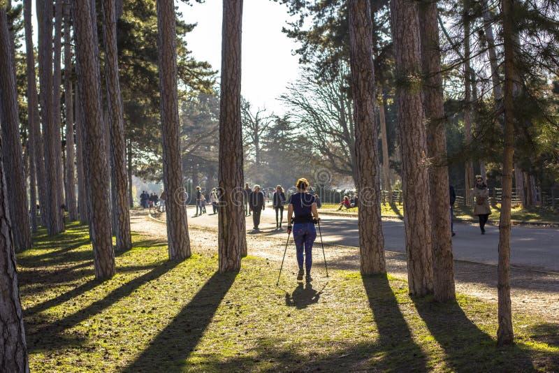 Mulher que exercita no parque em Paris Passeio nórdico na natureza da mola imagens de stock royalty free
