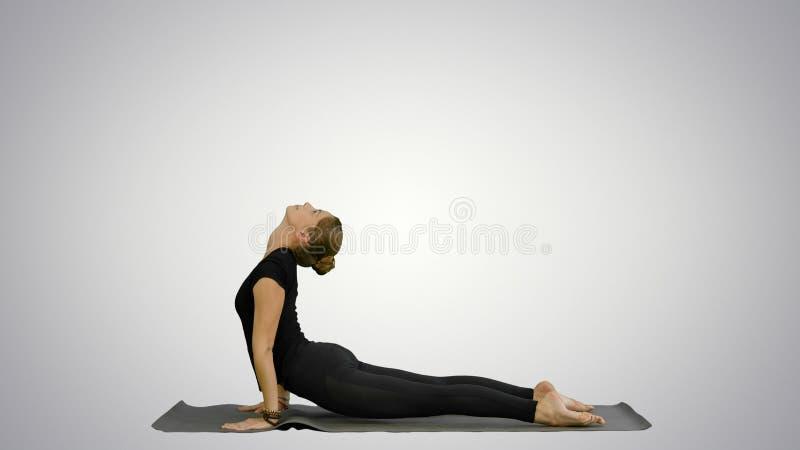 Mulher que faz a posição ascendente da ioga do cão, parte da saudação de Sun no fundo branco imagem de stock