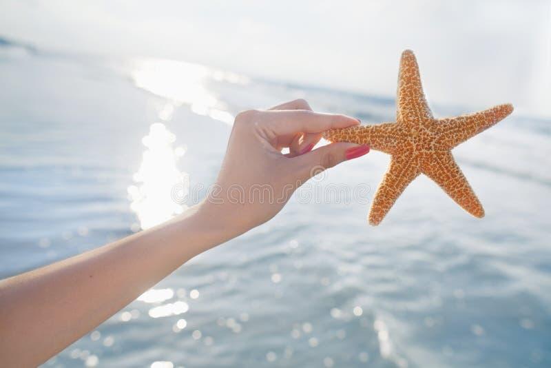 Mulher que guarda a estrela do mar na praia foto de stock