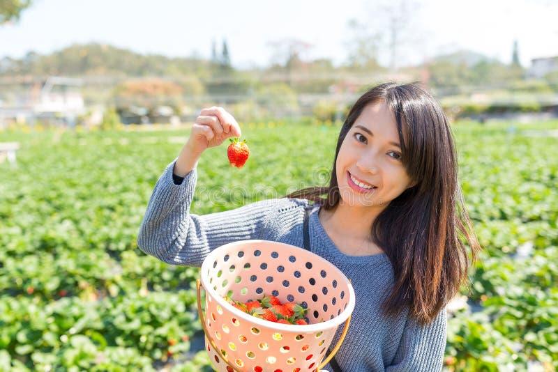 Mulher que guarda a morango no campo foto de stock