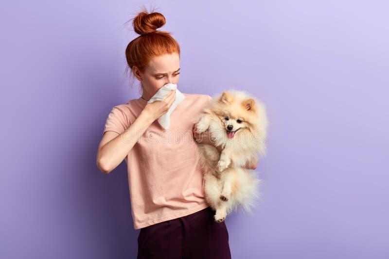 Mulher que guarda um cão que esteja tresandando imagem de stock royalty free