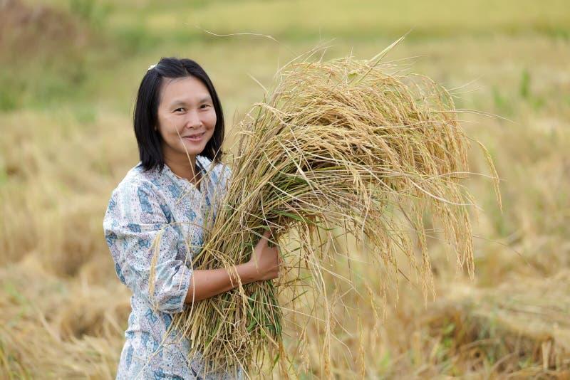 Mulher que guardara o arroz fotos de stock royalty free