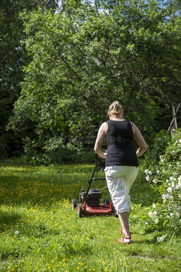 Mulher que jardina no pátio traseiro foto de stock royalty free