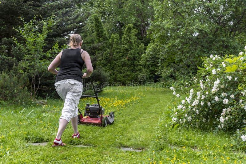 Mulher que jardina no pátio traseiro fotografia de stock royalty free