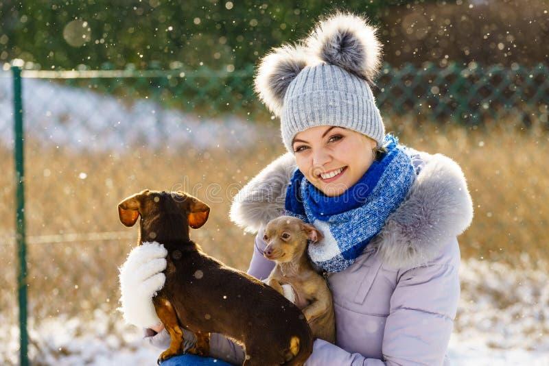 Mulher que joga com os cães durante o inverno foto de stock
