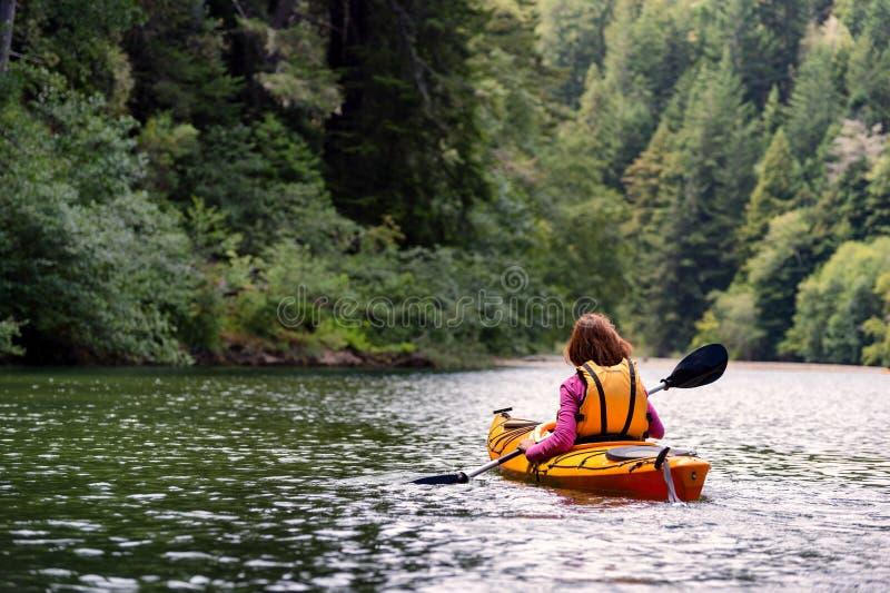 Mulher que kayaking no rio na floresta fotografia de stock royalty free