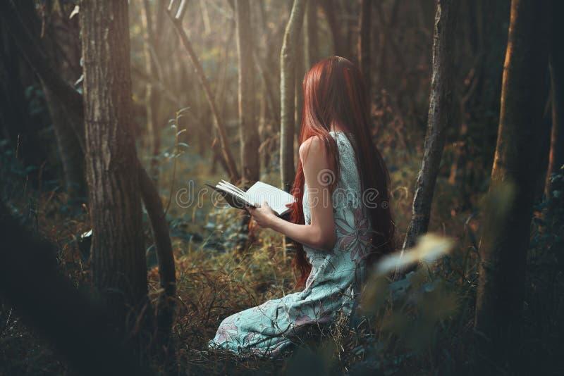 Mulher que lê apenas nas madeiras fotografia de stock royalty free