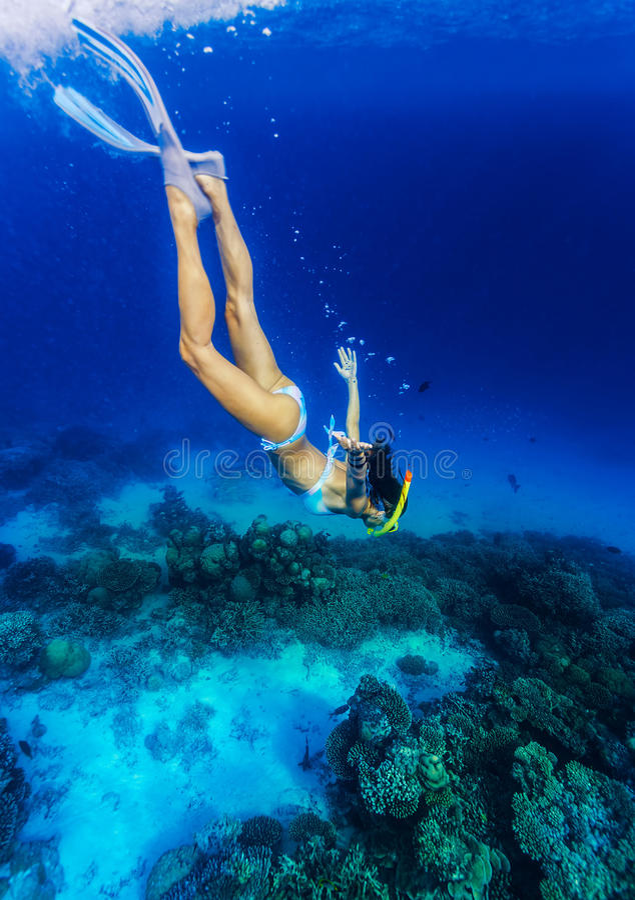 Mulher que mergulha à parte inferior de mar fotos de stock