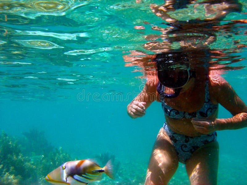 Mulher que mergulha na água clara de Bora Bora fotografia de stock royalty free