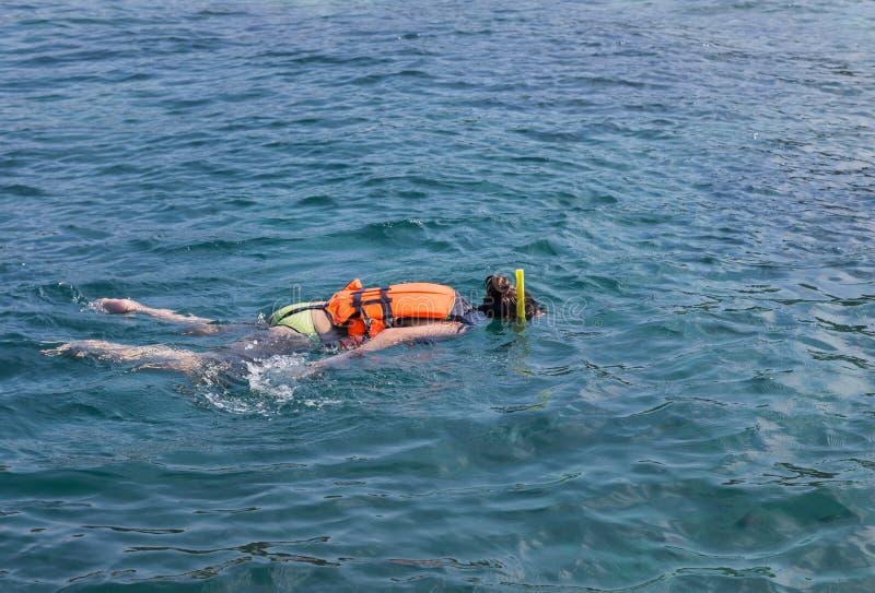 Mulher que mergulha no mar de andaman em ilhas da phi da phi, Tailândia foto de stock royalty free