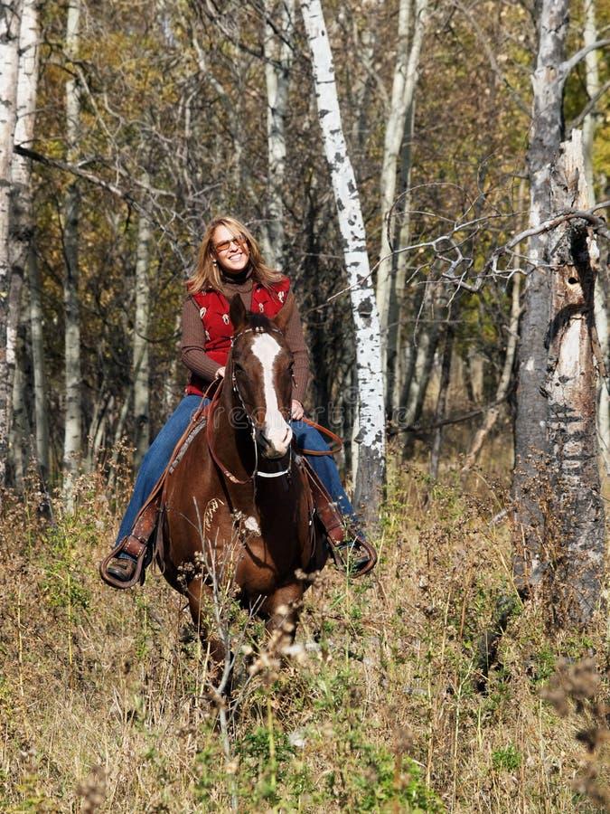 Download Mulher que monta um cavalo foto de stock. Imagem de fotografia - 10063398