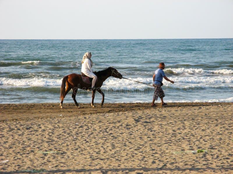 Mulher que monta um cavalo com hijab pela praia A mulher muçulmana que senta-se a cavalo, um homem do cavalo dirige ao lado do ma foto de stock royalty free