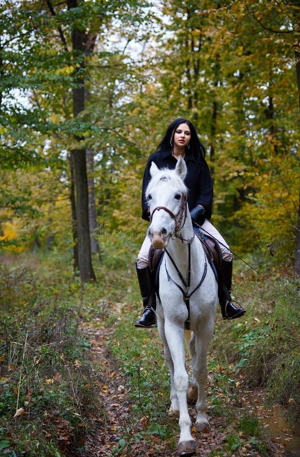 Mulher que monta um cavalo na floresta foto de stock royalty free