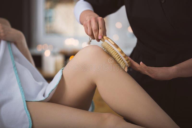 Mulher que obtém de consolidação o tratamento da escova da planta imagens de stock royalty free