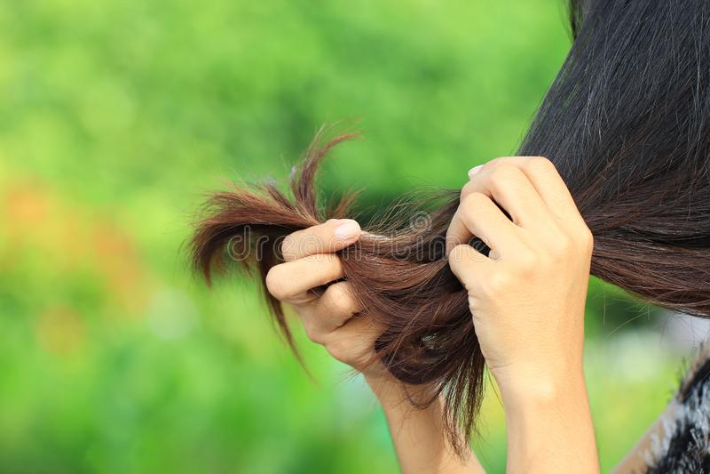 Mulher que olha extremidades rachadas danificadas do cabelo no fundo da natureza, conceito de Haircare imagens de stock royalty free