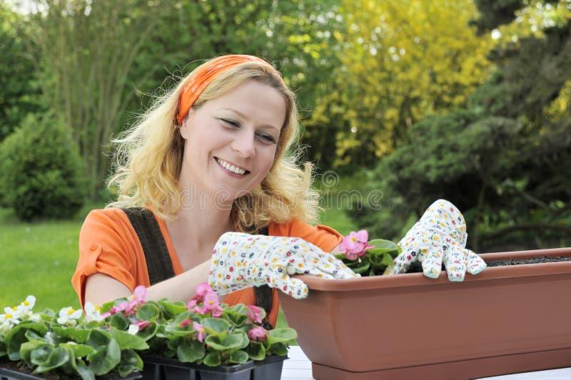 Mulher que planta flores imagens de stock royalty free