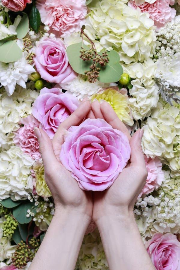 A mulher que prende a cor-de-rosa levantou-se Ornamento romântico da flor imagem de stock royalty free