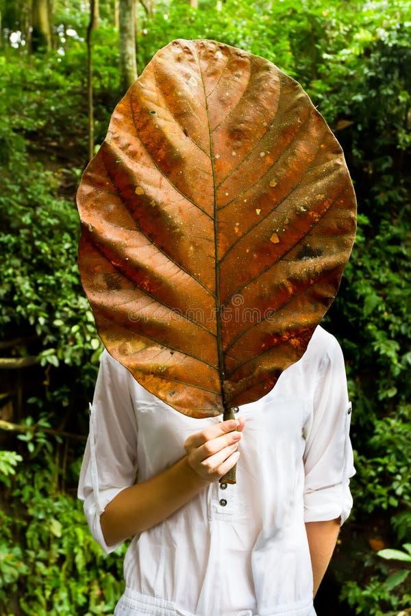 Mulher que prende uma folha seca gigante foto de stock
