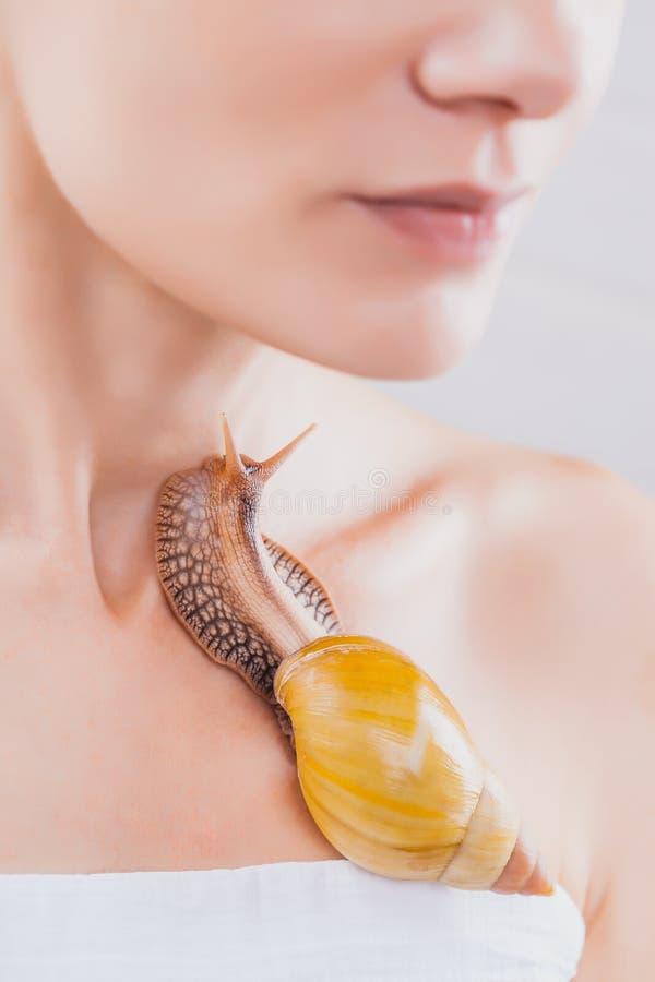 Mulher que recebe a massagem facial do caracol Caracol na cara Procedimento de limpeza no salão de beleza dos termas foto de stock royalty free