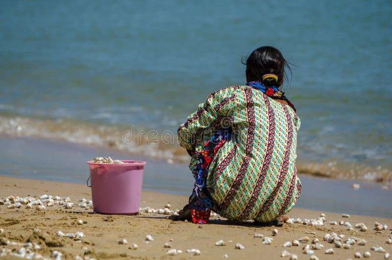 Mulher que recolhe caracóis de mar fotografia de stock royalty free