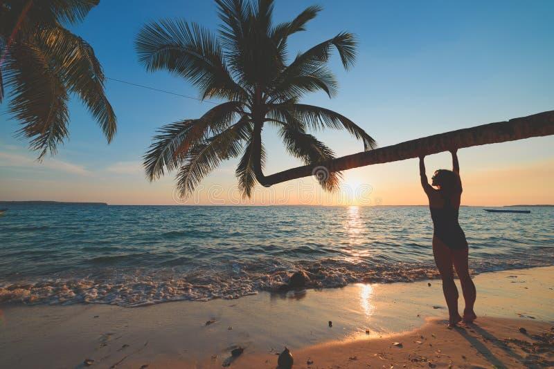 Mulher que relaxa sob a fronda da palma de coco na praia branca c?nico da areia, dia ensolarado, ?gua transparente de turquesa, p imagem de stock