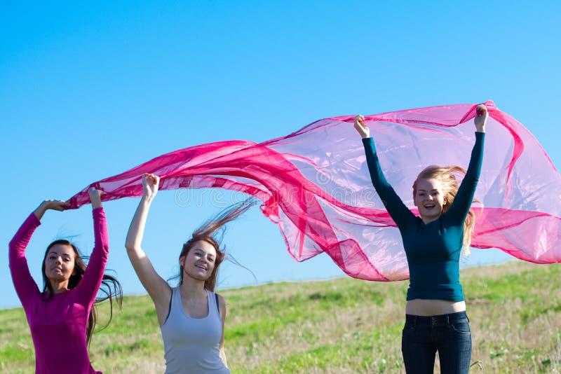 A mulher que salta com o tecido no campo a foto de stock