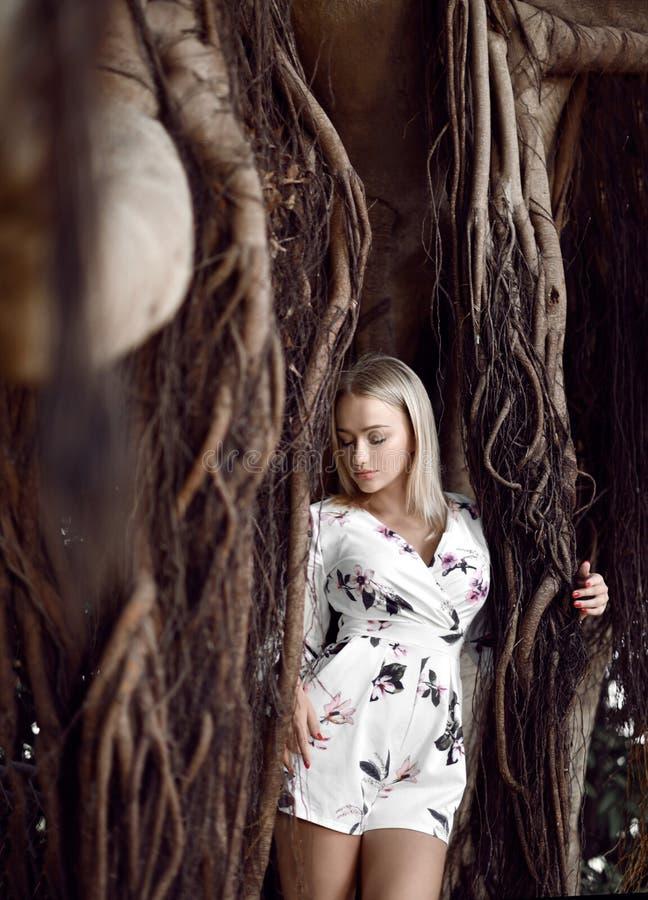 Mulher que senta-se em árvores enormes da selva com as lianas no vestido ocasional branco imagem de stock royalty free
