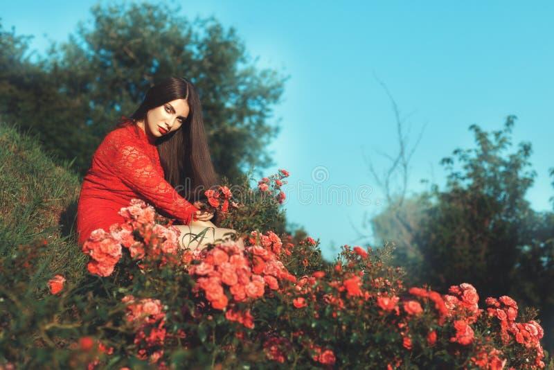 Mulher que senta-se entre arbustos cor-de-rosa fotos de stock
