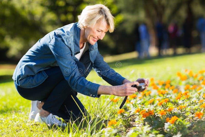 Mulher que toma flores das fotografias fotos de stock