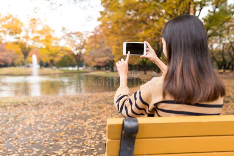 Mulher que toma a foto no parque fotos de stock