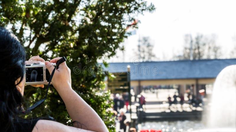 Mulher que toma uma foto a uma fonte em um parque em um dia ensolarado imagens de stock