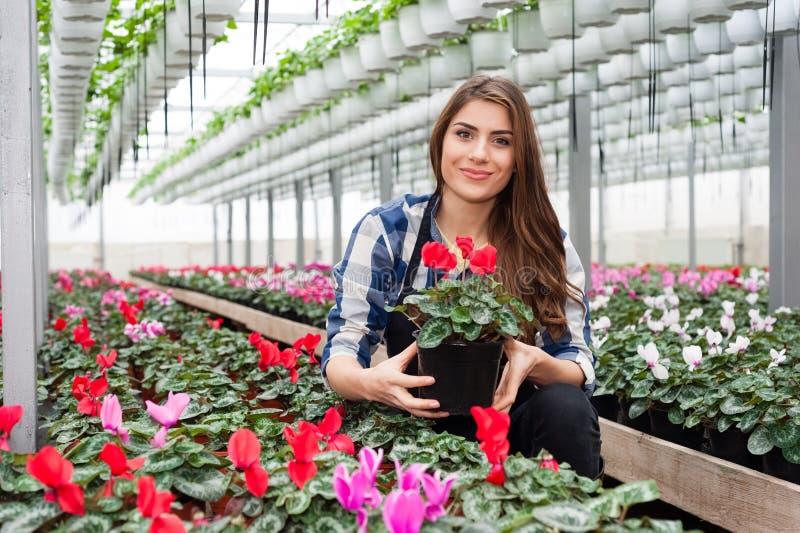 Mulher que trabalha com flores fotografia de stock