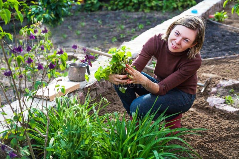 Mulher que trabalha no jardim imagens de stock