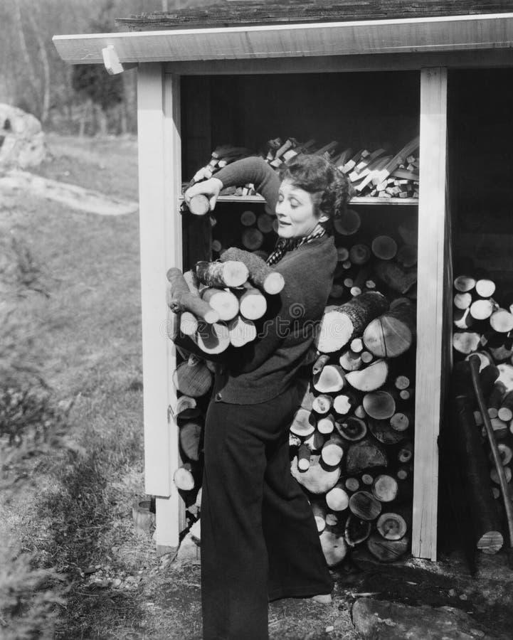 Mulher que transporta a lenha (todas as pessoas descritas não são umas vivas mais longo e nenhuma propriedade existe Garantias do imagem de stock
