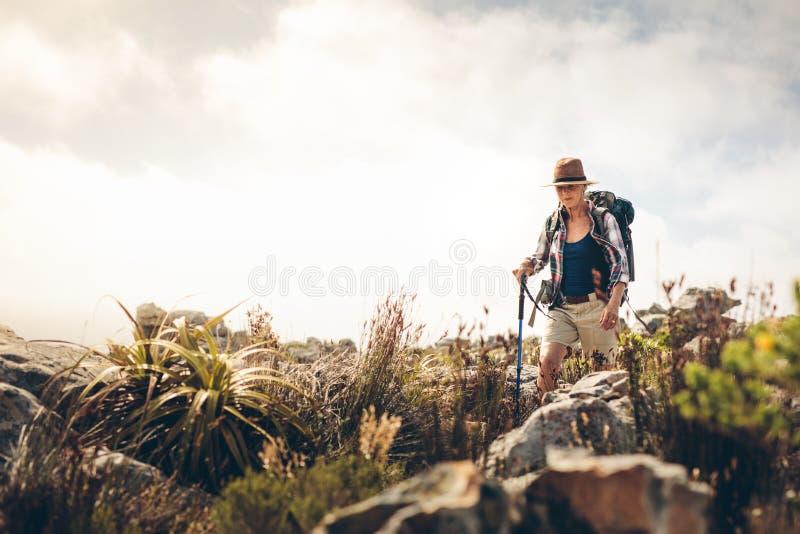 Mulher que trekking abaixo de um monte imagens de stock royalty free
