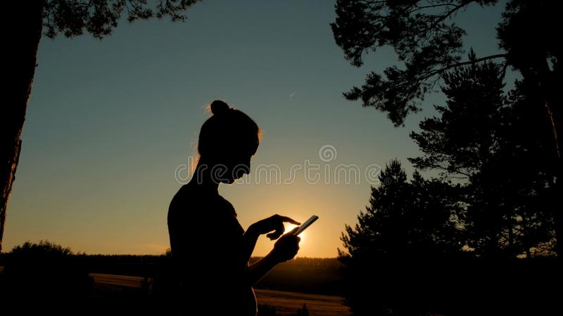Mulher que usa o smartphone no parque no por do sol foto de stock